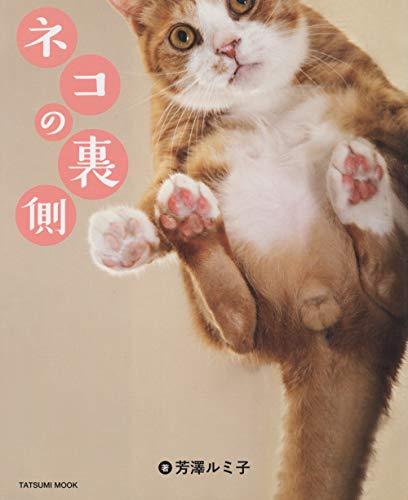 ネコの裏側 (タツミムック)