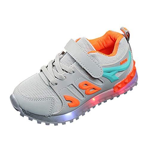 HDUFGJ Kinder Freizeitschuhe Mädchen Jungen Led Leuchtende Schuhe Outdoor Slip-On Sportschuhe Atmungsaktive Kinderschuhe Mesh Sneakers Socken Schuhe25 EU(Grau)
