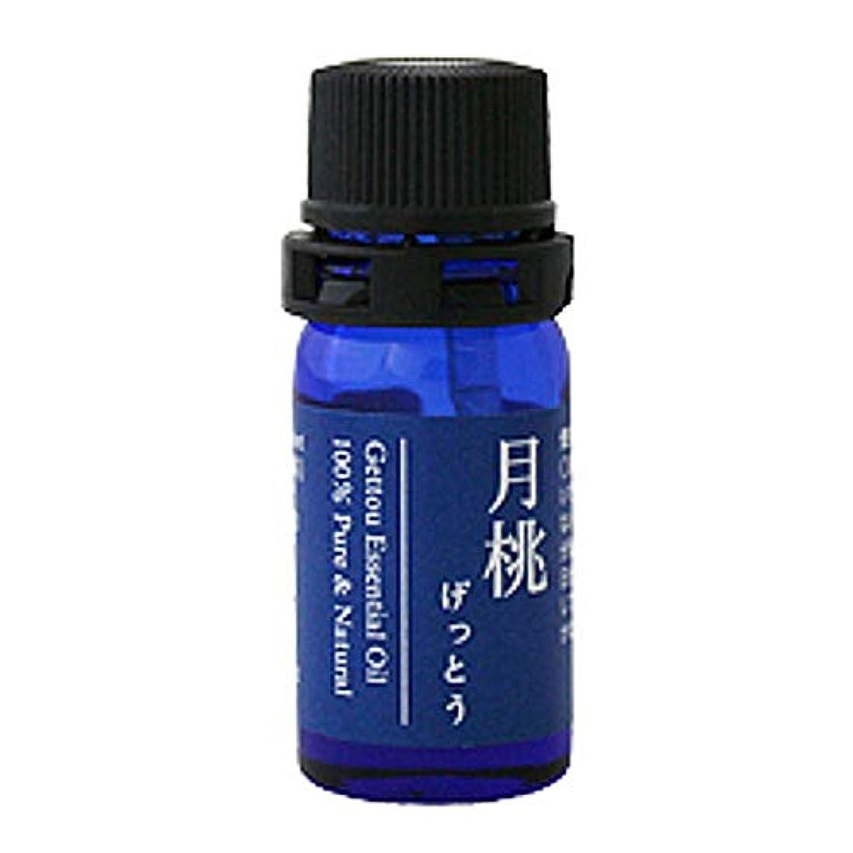 市の中心部砲撃ジャンル月桃 エッセンシャルオイル (シマ) 2.5ml