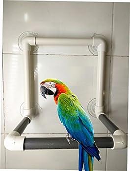 Hypeety Perchoir à oiseaux portable avec ventouse pour perroquet - Support de baignoire pour fenêtre - À suspendre au mur (4 ventouses)
