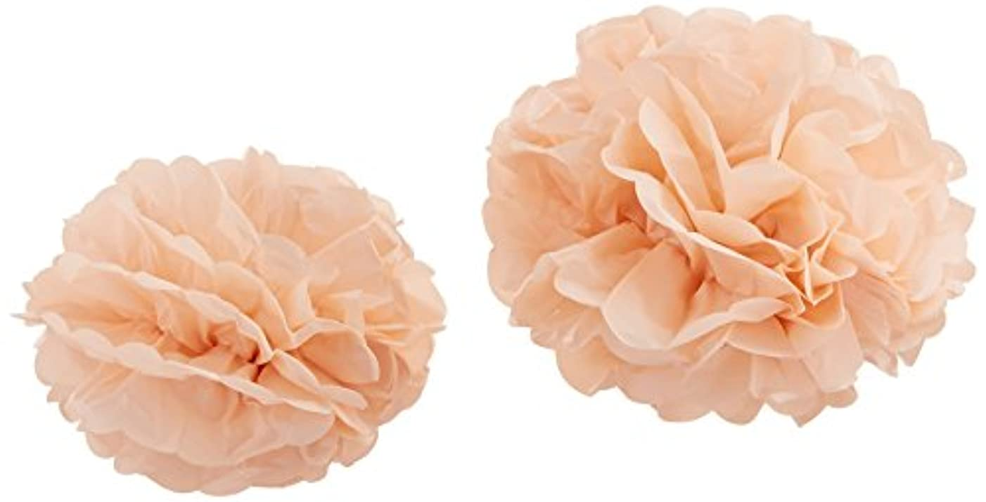 Ginger Ray PP-634 Perfection Tissue Paper Poms Party & Wedding Decorations, Pastel Pink, 1,