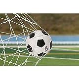 Delaman Football Soccer Goal Net Full Size Sports Replacement Soccer Goal Post Net for Sports Match Training (6X4FT)