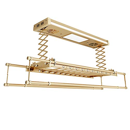 Ferngesteuerter elektrischer Wäscheständer zum Heben, zweipolige Wäscheleine mit Balkon, automatische versenkbare Wäschetrockner, an der Decke montierte elektrische Wäschetrockner für die Badwäsche