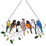 HUIJUAN Rascador acrílico acrílico de la serie de pájaros, colgante en alambre, multicolor, regalo para decoración del hogar, regalo