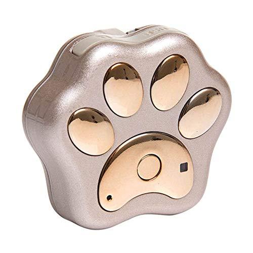 ZREAL Nano GPS cane Tracker Mini Wi-Fi Bluetooth pets monitoraggio GPS Anti-lost localizzazione dispositivo di pista oro