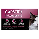 Capstar Fast-Acting Oral Flea Treatment for kitten