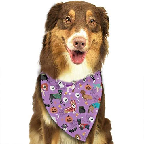 XCNGG Perros con disfraces de Halloween Razas de perros disfrazados Pañuelo morado Bufandas para mascotas Baberos lavables Pañuelo triangular para perros Pañuelos para perros pequeños y grandes Acceso