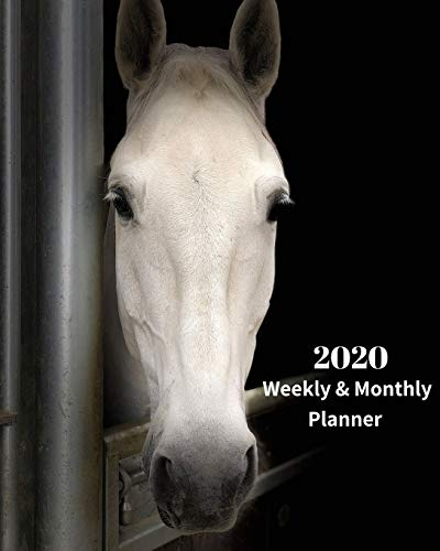 2020 Weekly and Monthly Planner: White Horse in Stable - Monthly Calendar with U.S./UK/ Canadian/Christian/Jewish/Muslim Holidays– Calendar in Review/Notes 8 x 10 in.- Horse Animal Nature