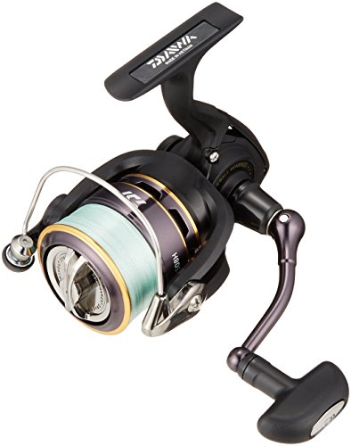 Daiwa 16 REGAL with PE 2508H [Japan Import]