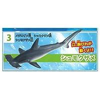 神秘の世界 大海の生物 海のハンター ホホジロザメ編 [3.シュモクザメ](単品)