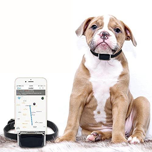 TWQ Tracker GPS Pet GPS, localizzatore di Cani per Gatti Mini GPS Impermeabile, Colletto di prevenzione della Perdita Intelligente, localizzatore di tracciamento del GAT