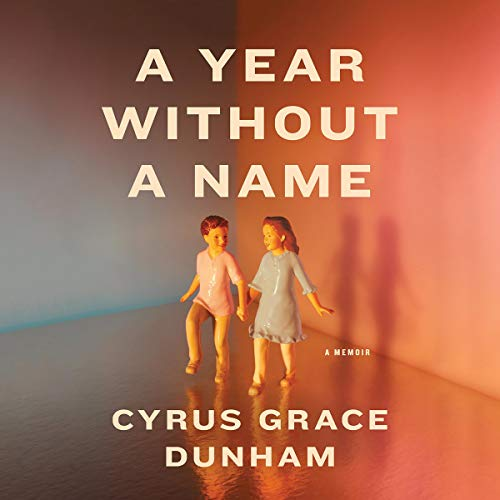 A Year Without a Name book cover