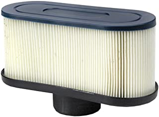 Air Filter Replaces Kawasaki # 11013-7047, 11013-7049, 99999-0384.Fits Models FR651V, FR691V, FR730V, FS481V, FS541V, FS600V, FS651V, FS691V, FS730V and FX600V Garden, Lawn, Supply, Maintenance