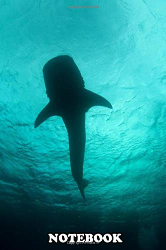Notebook: Whale Shark From Below , Journal for Writing, College Ruled Size 6' x 9', 110 Pages