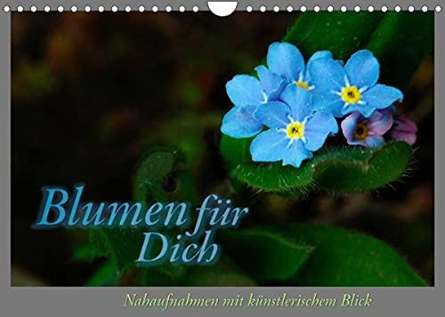 Blumen für Dich (Wandkalender 2022 DIN A4 quer)