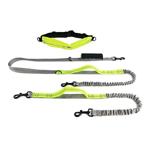 InnoPet Retractable Double Dog Hands Free Leash,Adjustable Waist Belt with Smartphone Pouch and Dual D-Rings, Dual Handle Reflective Bungee Leash for Small Medium Large Dogs