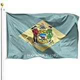 DFLIVE Double Sided Delaware State Flag 3x5ft Heavy Duty Polyester 3 Ply DE Diamond State Flags Indoor and Outdoor Use