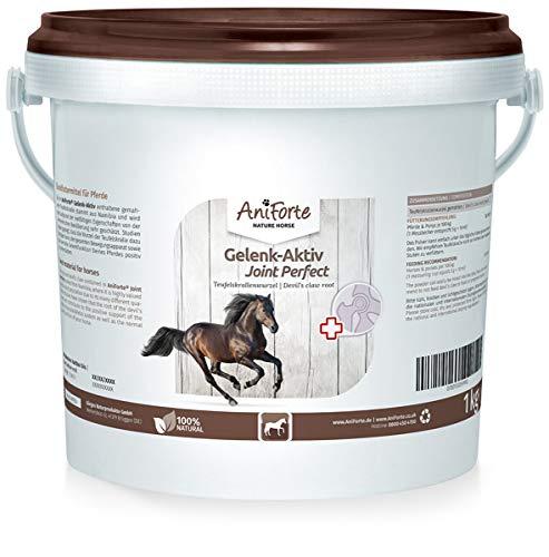 AniForte Gelenk Aktiv Teufelskralle Gelenkpulver für Pferde 1kg - 100% Naturprodukt Gelenke Pulver, Hohe Akzeptanz beim Pferd, Pulver statt Kapseln oder Tabletten