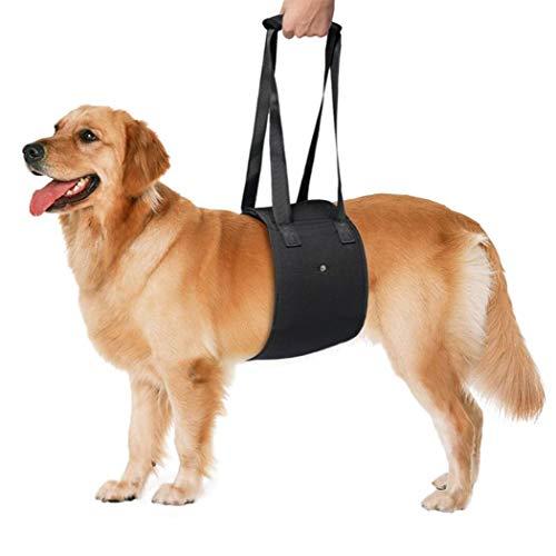 Pettorina di Sollevamento per Cani,Cintura Ausiliario per Gli Animali di Compagnia Imbracatura di Sollevamento per Gli Animali Anziani o Malato di Cane a Salire e Scendere delle Scale Black-Medium