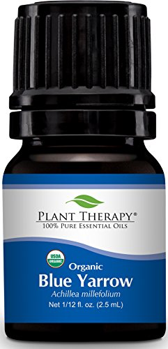 Plant Therapy Blue Yarrow Organic Essential Oil 2.5 ml (1/12 oz) 100% Pure, Undiluted, Therapeutic Grade