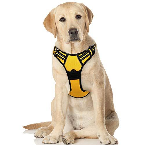 rabbitgoo No-Pull Hundegeschirr für große Hunde Welpengeschirr Einstellbar Weich Geschirr Sicher Kontrolle Brustgeschirr Gepolstert Dog Harness Leuchtgelb XL