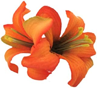 Best orange lily hair clip Reviews