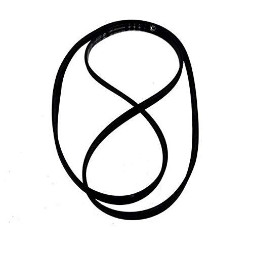 481235818206 Courroie poly V élastique type1242 J5 MAEL ou 1242J5MAEL = 1238J4 = 1236J4