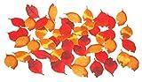 《DecorationLabo》ニュー枯れ葉セット (50枚入)(4100876) 秋 造花 飾り 販促グッズ 店内装飾 落ち葉 枯れ葉