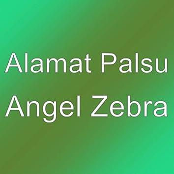 Angel Zebra
