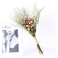 造花 自然乾燥花gypsophilaブーケイン乾燥花の配置花の結婚式の家の装飾乾燥花 (Color : K)