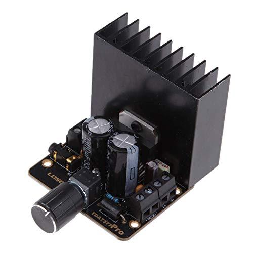 PYROJEWEL TDA7377 2x30W Amplificador del Coche de la Junta 2channels Digitales estéreo 12V Clase AB Placa de Circuito