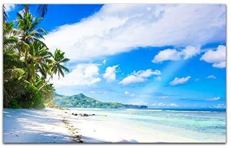 Acrylglasbilder 80x50cm Landschaft Malediven Strand Meer Palmen Acryl Bilder Acrylbild Acrylglas Wand Bild 14H415