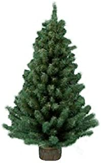 pre lit christmas tree clearance canada