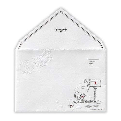 ホールマーク パッド用封筒SNポストと手紙 643010