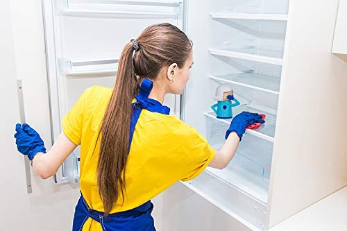 Panding Cool Mama Microwave Cleaner Fridge Deodoriser Angry Mama Fridge Cleaner Freezer Reusable Odor Freshener Remover,kitchen gadgets, Just Add Baking Soda- Freezer Odor Freshener Remove