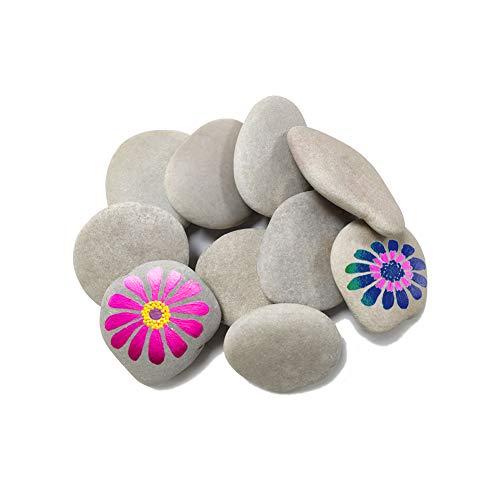 Lifetop 10PCS Painting Rocks, DIY Rocks Flat & Smooth Kindness Rocks for Arts, Crafts, Decoration, Medium Rocks for Painting,Hand Picked for Painting Rocks