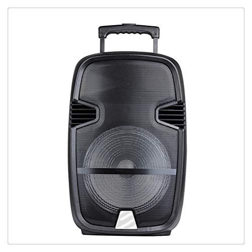 RongWang Columna De Altavoz Bluetooth Potente Portátil Altavoces De Luz De Karaoke Grandes Centro De Música con Radio TF USB Aux para Fiesta