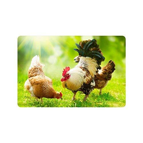 LVOE TTL Lustige Tier Hühner Hahn und Hühner Fußmatte rutschfeste Innen- und Außentürmatte Teppich Home Decor, Eingang Teppich Fußmatten Gummiunterlage, 23,6 X 15,8 Zoll