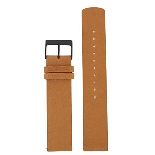 Skagen Reloj Banda Correa Intercambiable LB de skw6359 para Banda skw6359 Reloj...