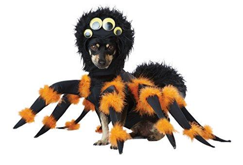 Aptafêtes - CS968955/L - Disfraz de araña para Perro - Talla L