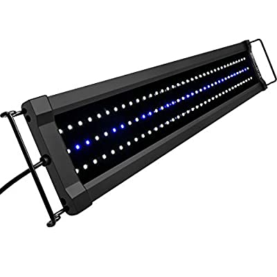 NICREW ClassicLED Gen 2 Aquarium Light, Dimmable LED Fish Tank Light with 2-Channel Control, White and Blue LEDs, High Output, Size 24 to 30 Inch, 18 Watts
