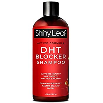 DHT Blocker Anti-Hair Loss Shampoo With Biotin for Men & Women Sulfate Free Natural DHT Blocking Shampoo for Hair Growth For Thinning Hair Hair Fall and Hair Loss Prevention Active Formula 16 Oz