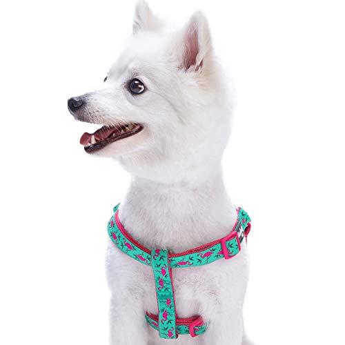 Blueberry Pet Step-In Geschirre für Hunde Pink Flamingo auf Hell-Smaragtgrün Hundegeschirr mit Zugentlastung Verstellbar, Nylon 42-54cm Brust, Passender Hundehalsband & Hundeleinen erhältlich separate