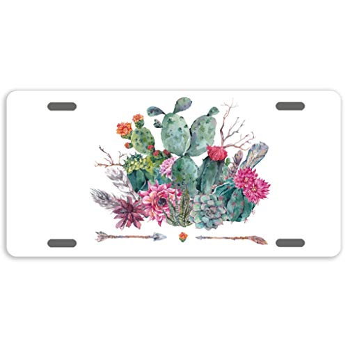 FEDDIY License Plate Watercolor Cactus Car Tag Decorative License Plate Cover Sign Metal Auto Tag Novelty Front License Plate 4 Holes 6 X 12 Inch