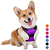 BARKBAY No Pull Dog Harness Large Step in Reflective Dog Harness with Front