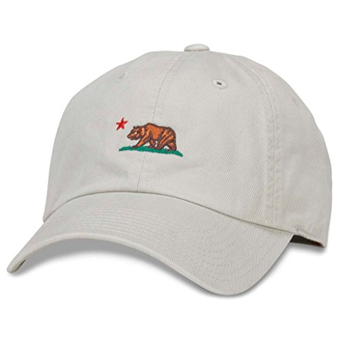 AMERICAN NEEDLE Micro Slouch Casual Dad Hat California Bear, Stone Grey (42920A-LITB-STN)