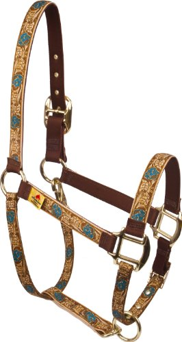 Red Haute Horse LRT1203A High Fashion Horse Horse Halter, Leather Rose Teal