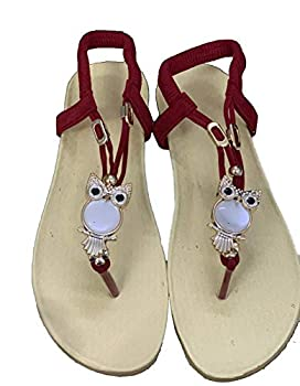 WenHong Women s Flip Flop Rhinestone Owl Sweet Sandals Clip Toe Sandals