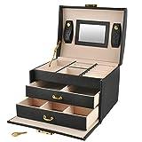 Schmuckkästchen Koffer 3 Farben Abschließbar Spiegel Tragegriff 2 Schubladen 6347, Farbe:Schwarz