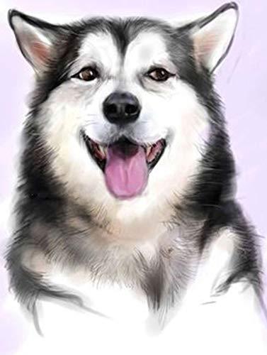 FXDGDFYDFHBFGHKHTDRGTRD 5d DIY volledige cirkel diamant schilderij slee hond kruissteek ronde strass mozaïek diamant borduurwerk huis decoratie geschenk